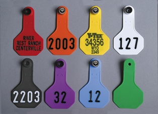 Small 2-Star All-American Tags from Y-Tex - Hot Stamped