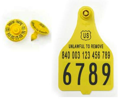 Official USDA '840' Tamper Evident Cattle Matched Set - e.Tag + XL Visual Panel (Destron Fearing)