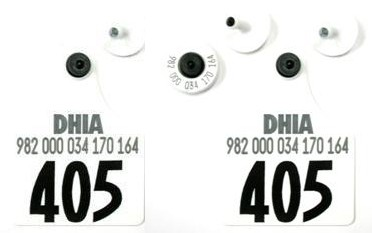 Official USDA '840' Ultra EID/Matched Pair with 2 Visual Numbered Sets - Maxi
