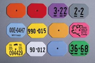 Multi-Star All-American Tags from Y-Tex - Hot Stamped