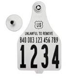 Official USDA '840' Tamper Evident Cattle Visual Tag Set (Destron Fearing) - Extra Large