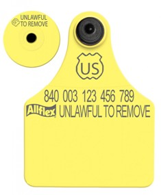 Official USDA '840' Large Tag with Global Small Male Set - Available Blank or Numbered