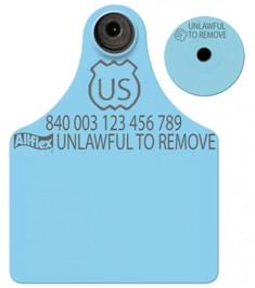 Official USDA '840' Maxi Tag with Global Small Male Set - Available Blank or Numbered